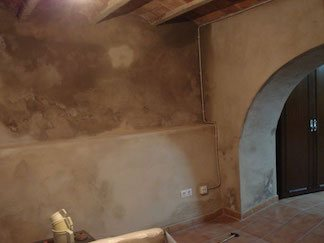 WALL WITH RISING DAMP